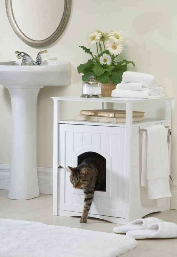 Cat-Friendly Home Ideas
