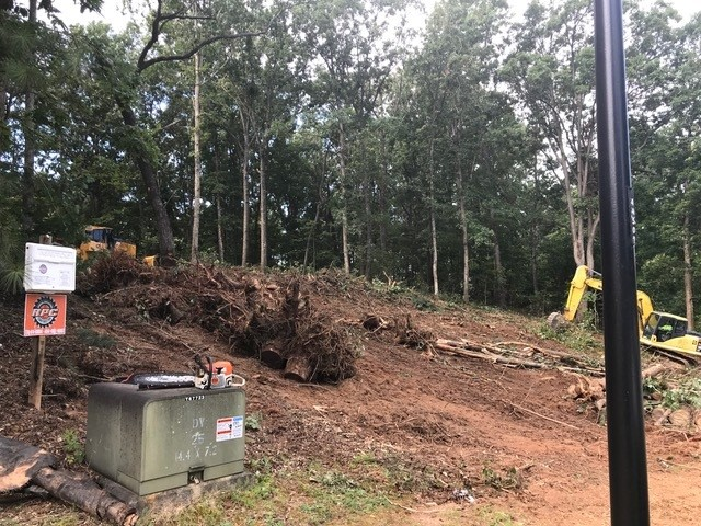 Site-clearing of The Birchwood plan 1239.