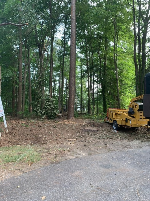 Lot clearing of The Sundance plan 219.